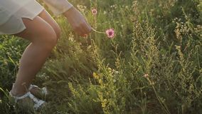 Девушка идя на траву, конец-вверх ног акции видеоматериалы