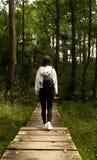 Девушка идя на тропу в лесе/девушке идя в лес сфотографированный от заднего/девушки с красивым рюкзаком в th стоковое фото