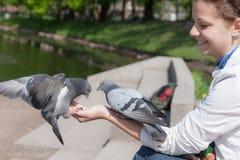 Девушка и голуби Стоковое фото RF