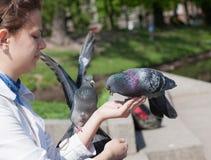 Девушка и 2 голубя Стоковое Изображение