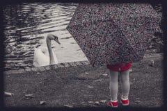 Девушка и лебедь Стоковое фото RF