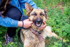 Девушка и ее любимая немецкая овчарка собаки в парке пока на re Стоковые Изображения