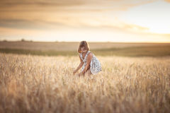 Девушка идет в поле с рожью на заходе солнца, образе жизни Стоковая Фотография