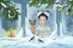 Девушка и кот смотря вне окно Стоковое Изображение
