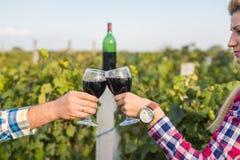 Девушка и парень в винограднике стоковое изображение
