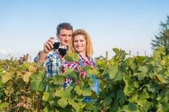 Девушка и парень в винограднике стоковая фотография