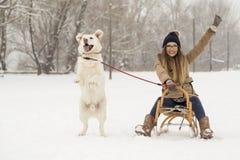Девушка и собака в снеге стоковое изображение rf