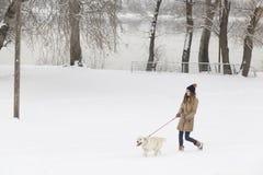Девушка и собака идя в снег стоковые фотографии rf