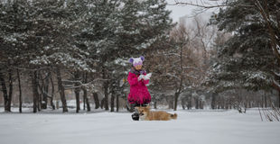 Девушка и собака Стоковое фото RF