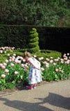 Девушка и цветки Стоковое фото RF