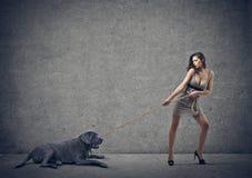 Девушка и черная собака стоковая фотография rf