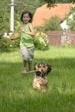 Девушка и щенок стоковая фотография rf
