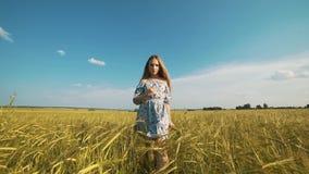 Девушка красоты бежать на желтом пшеничном поле над небом захода солнца черная изолированная свобода принципиальной схемы счастли сток-видео