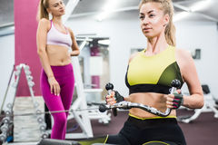 Девушка крытого портрета красивая сексуальная в sportswear в спортзале Стоковые Фотографии RF