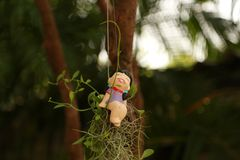 Девушка кукол Стоковые Фотографии RF