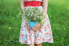 девушка маргариток Стоковое Фото
