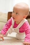 девушка младенца вползая Стоковые Изображения