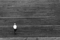 девушка много лестниц стоковые фотографии rf