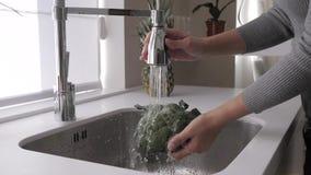 Девушка моет брокколи в кухонной раковине акции видеоматериалы