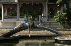 девушка моста стоковая фотография rf