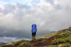 Девушка на горах Стоковые Изображения RF