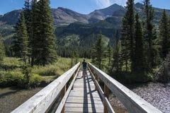 Девушка на деревянном мосте Стоковые Фото