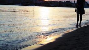 Девушка на заходе солнца идет barefoot вдоль берега Девушка идет barefoot на воду акции видеоматериалы