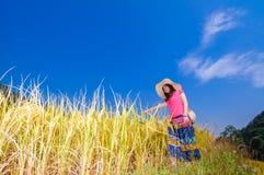 Девушка на золотых террасах Стоковое Изображение RF