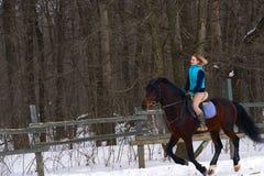 Девушка на лошади скачет галопы Девушка тренирует ехать лошадь в малом paddock Пасмурный зимний день стоковое изображение rf