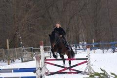 Девушка на лошади скачет над барьером Жокей девушки тренировки ехать лошадь Пасмурный зимний день Стоковое Изображение