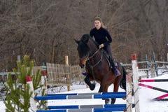 Девушка на лошади скачет над барьером Жокей девушки тренировки ехать лошадь Пасмурный зимний день Стоковые Изображения