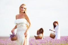 Девушка на поле лаванды Стоковые Изображения