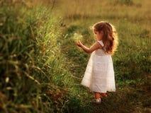 Девушка на предпосылке зеленой травы Стоковая Фотография RF
