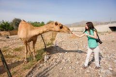 Девушка на ферме верблюда Стоковое Изображение