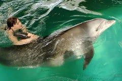 Девушка обнимает дельфина в бассейне Плавающ с дельфинами, сообщение с животными стоковые фото