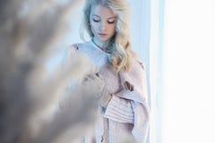 девушка образа жизни Настроение зимы рождество моя версия вектора вала портфолио Стоковое Изображение