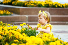 Девушка около цветника стоковая фотография rf