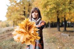Девушка осени идя в парк города Портрет счастливой симпатичной и красивой молодой женщины в лесе в цветах падения Фокус дальше Стоковые Изображения