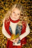 Девушка осени Стоковые Изображения