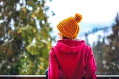 Девушка погоды Snowy стоя назад Стоковые Фотографии RF