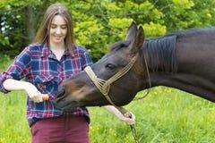 Девушка подает ее любимчик лошади с морковью Стоковые Фото