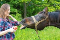 Девушка подростка подает ее лошадь Стоковые Изображения