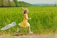 Девушка при сеть бабочки имея потеху Стоковое фото RF
