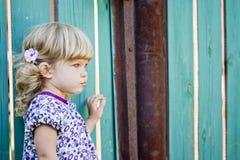 Девушка против загородки страны Стоковое Изображение