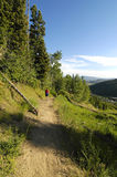девушка пущи hiking красная тропка рубашки Стоковая Фотография RF