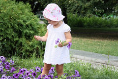 девушка ребенка милая Стоковое фото RF