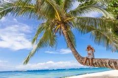 Девушка ребенка сидя на пальме, тропических каникулах пляжа Стоковые Изображения
