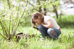 Девушка ребенк с лупой исследует траву Стоковое Фото