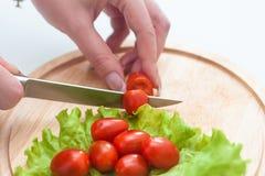 Девушка режет томаты вишни Стоковые Изображения RF
