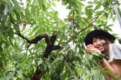 Девушка рудоразборки плодоовощ на наружном месте Стоковые Фото